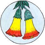 mov-bolivia-148-logo